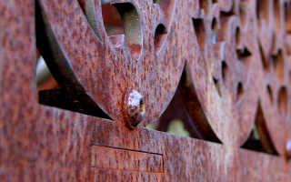 Основные виды коррозии металлов