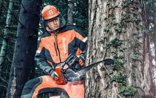 Как спилить толстое дерево бензопилой
