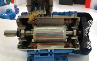 Устройство асинхронного электродвигателя с короткозамкнутым ротором